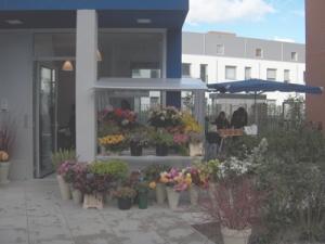 Blauwe Huis-bloemen