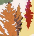 colour sample 3lowres3crop